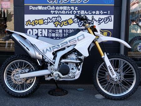 WR250R Lカスタム