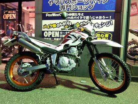 SEROW250  イトちゃん!!