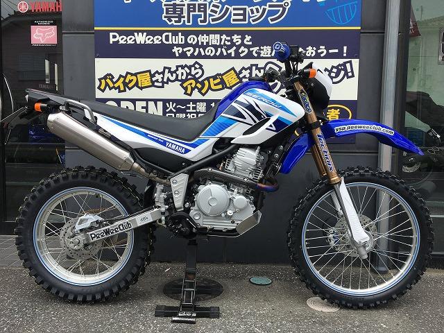 SEROW250 demo1!